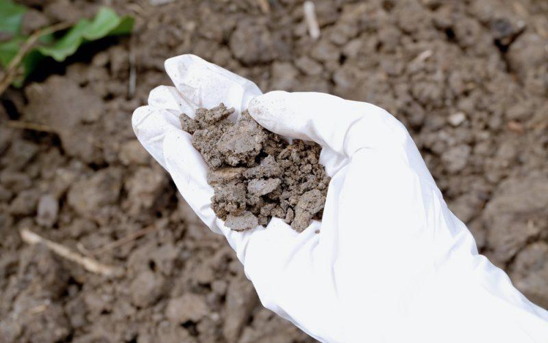 בדיקות זיהום בקרקע